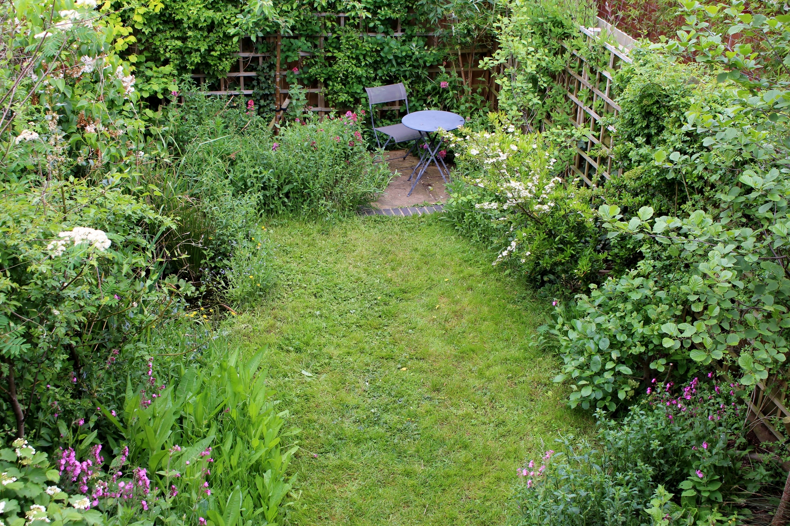 Case study a small wildlife garden hazelwood landscapes for Wish garden deep lung